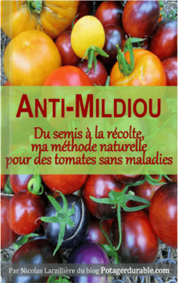 ★★★★★ (France)Comment bichonner (naturellement) vos tomates.