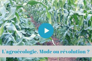 ★★★★☆ FranceL'Agroécologie. Effet de mode ou révolution ? Avec SupAgro Montpellier.