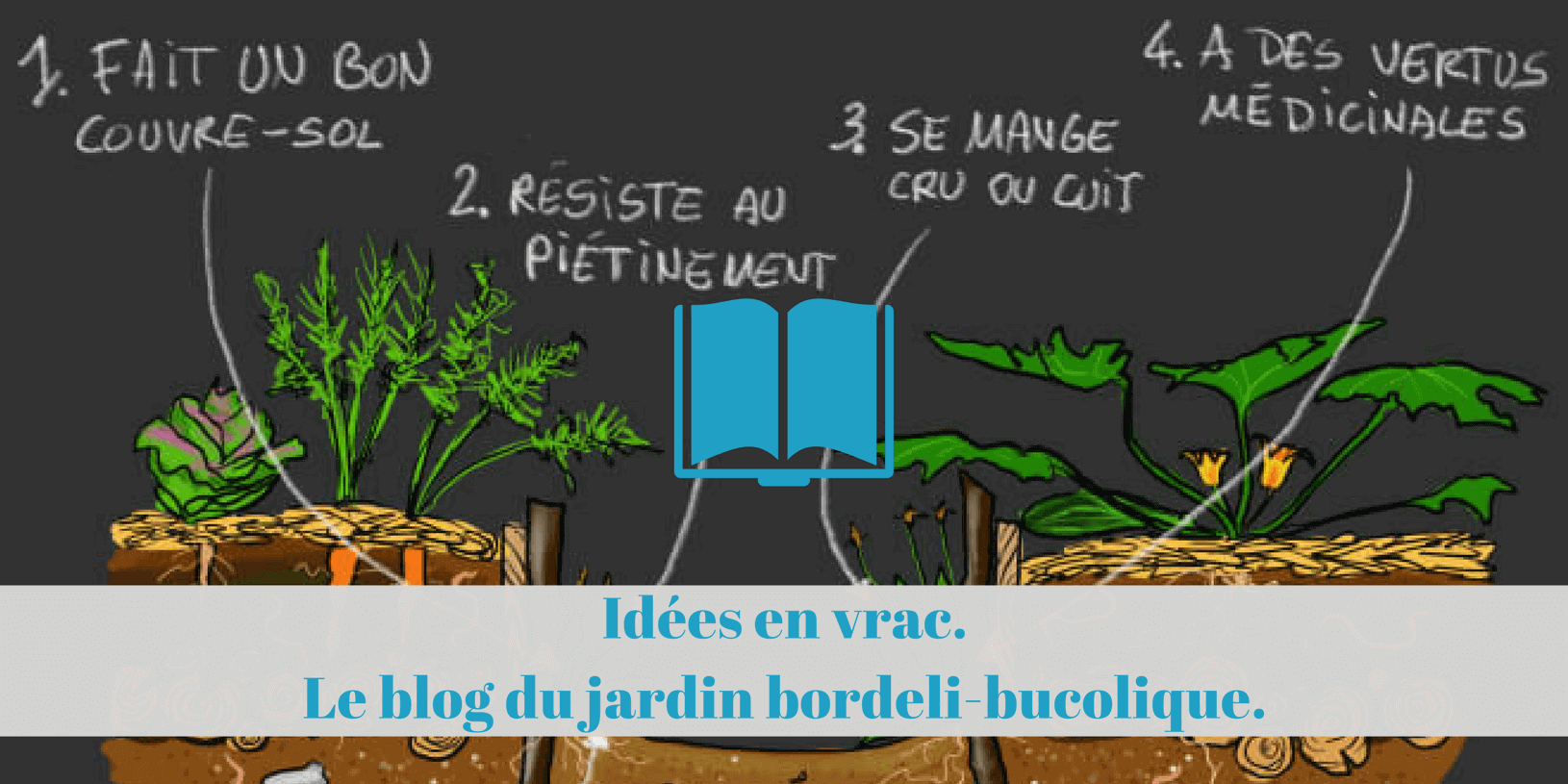 permaculture, suisse, ecologie, bio, jardin
