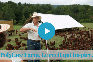 permaculture, microferme, viable, rentable, salatin, bio