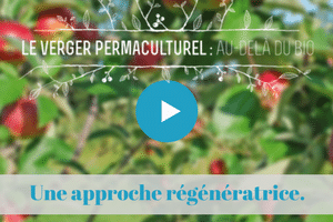 mooc, projet, collectif, colibris, permaculture, oasis