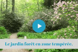 ★★★★☆ UK Comment créer un jardin forêt comestible en zone tempérée. Avec Martin Crawford.