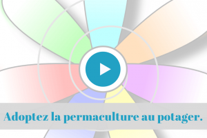 cours, formation, enligne, permaculture, potager