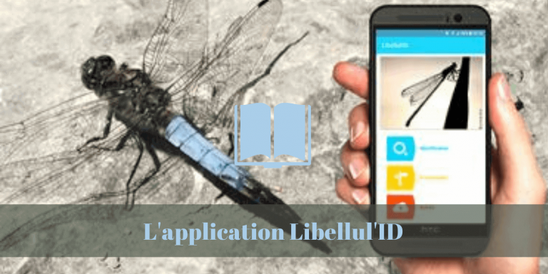 smart phone, application, libellules, hepia