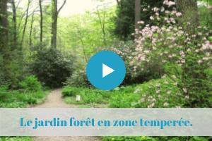 Cours En Ligne Jardin Foret Jardin Nourricier Permaculture