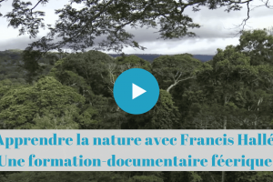 permaculture, francis, halle, documentaire