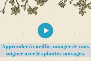 ★★★★★ France Apprenez à cueillir, manger et vous soigner avec les plantes sauvages en toute sécurité.
