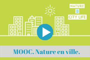 climat, ville, changement, nature, urbain