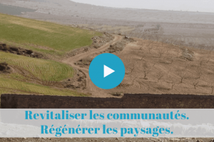 permaculture, mooc, desertification, sol