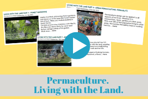 permaculture, video, formation, training