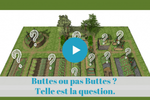 ★★★★★ France Buttes ou pas Buttes. La question (à se poser au début).