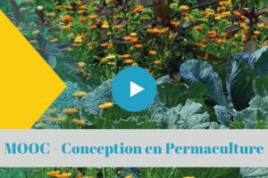 permaculture, universite colibris, mooc, formation, a distance