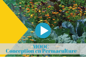 mooc, permaculture, conception, universite, colibris