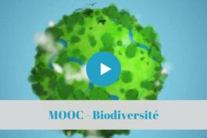 mooc, biodiversité, permaculture, formations, en ligne, a distance