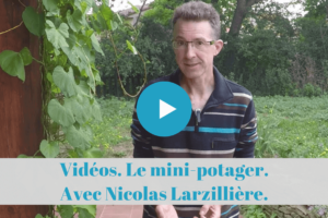 video, youtube, permaculture, jardinage, mini-potager