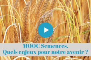 permaculture, semences, formations, enligne, mooc, cours, a distance